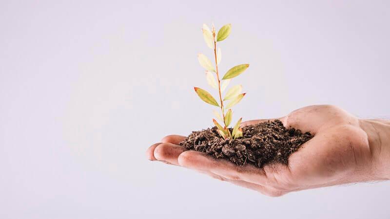 Como avaliar o crescimento de uma empresa? Confira 5 perspectivas