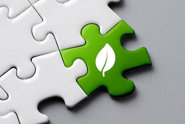 Como tornar uma empresa mais sustentável